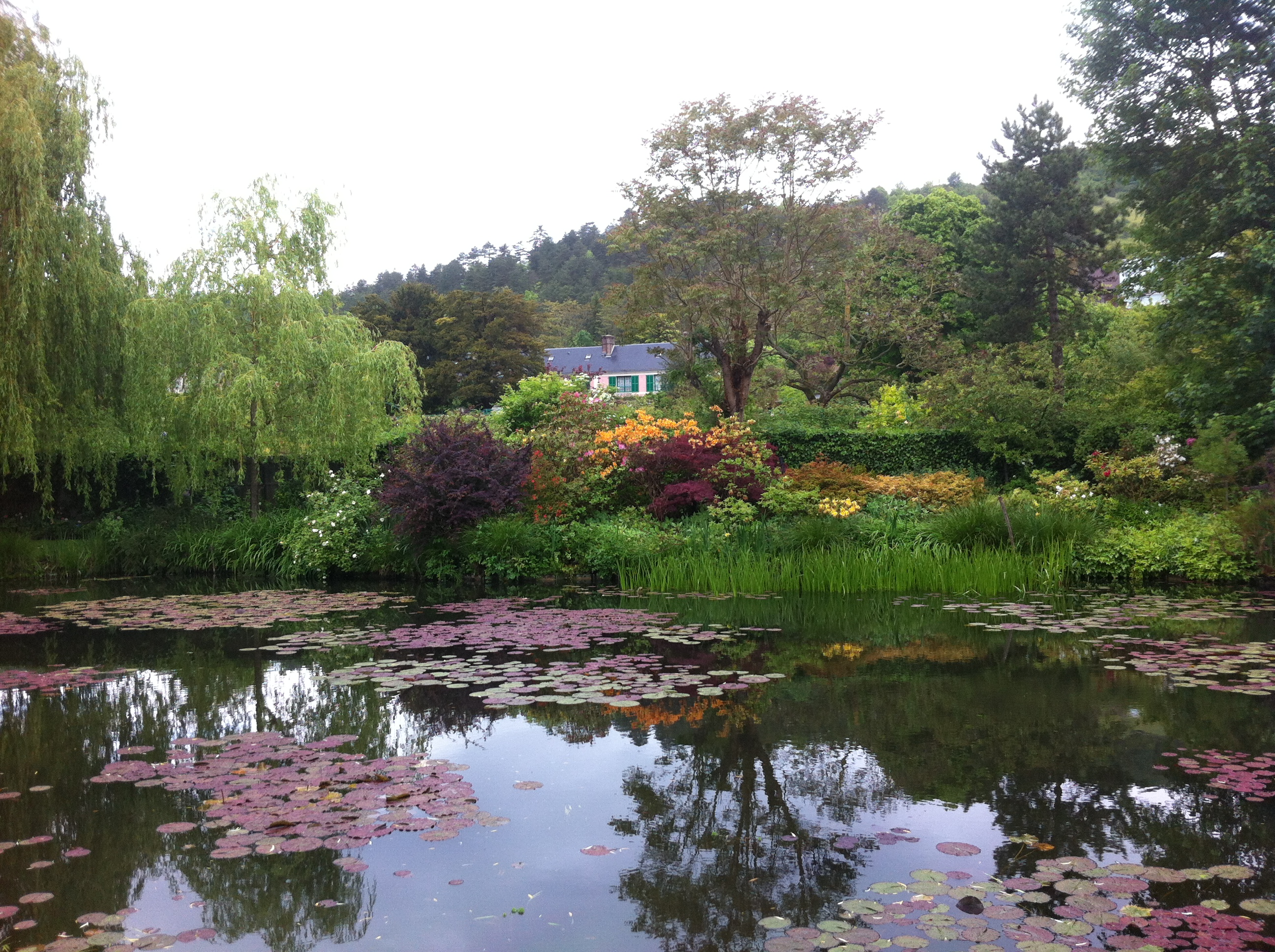A visit to Monet's garden