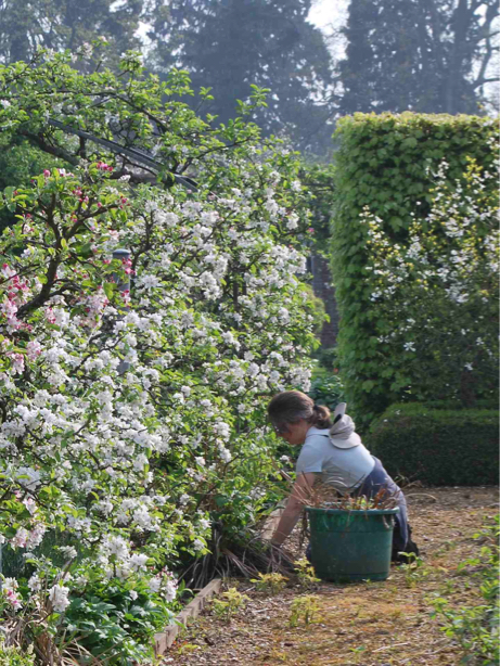 Discover a new career as a gardener