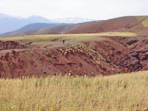 Hills near Kasbah Angour